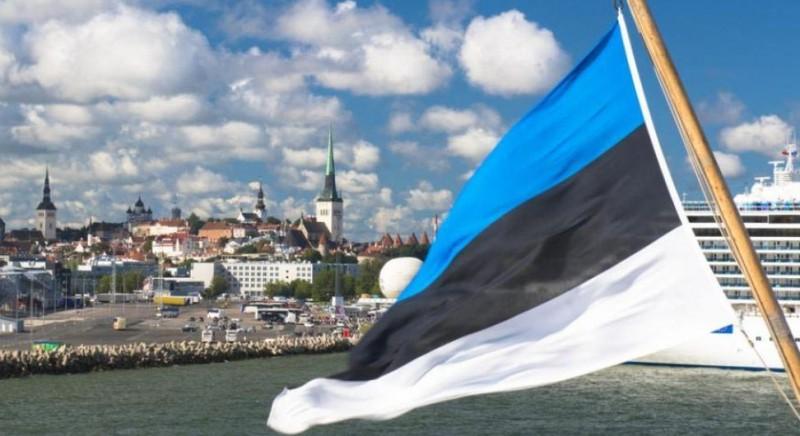 Естонія, митні правила, що треба знати їдучи в країну